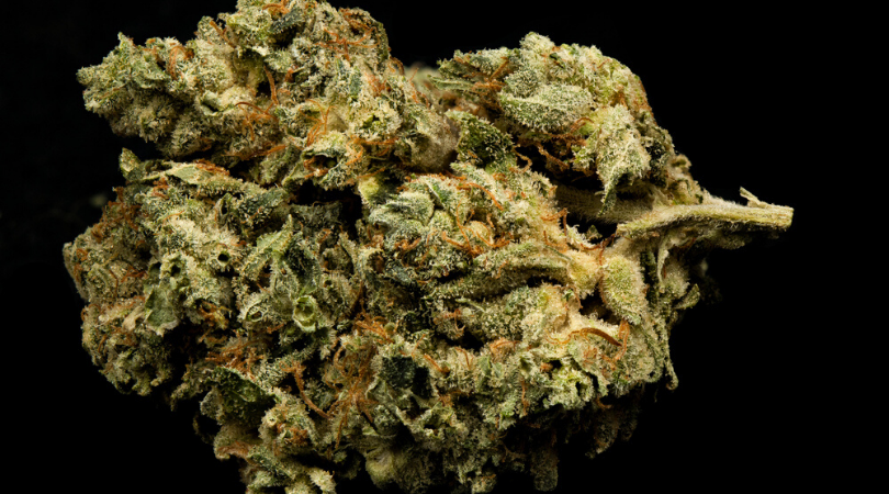 15 Best Marijuana Strains That Won't Get You Too High