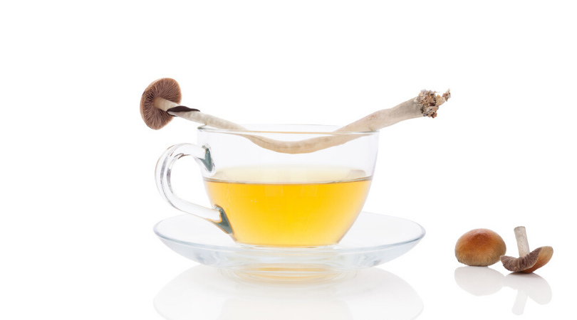 Here's How to Make Delicious Magic Mushroom Tea