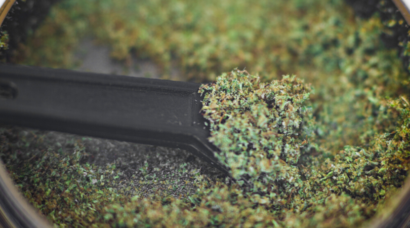 Kief 101: An In-Depth Guide