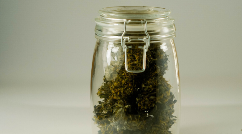 Storing Marijuana: How To Keep Weed Fresh
