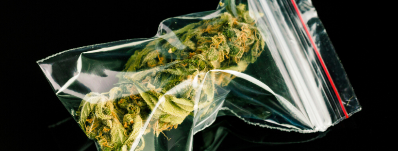 Vacuum Seal Your Weed For Long-Lasting Freshness