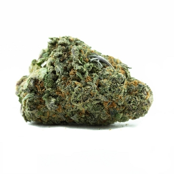 Animal Cookies Indica-Dominant Hybrid AAA Bud