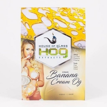 HOG Extracts Banana Cream OG Hybrid Shatter 1g
