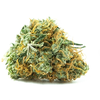 Lemon Sativa Sativa AAA Bud