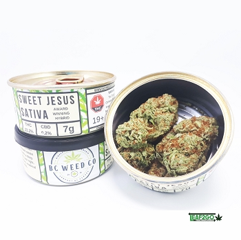 Tuna Can Kush by BC WEED CO - Sweet Jesus Sativa AAAA+ Flower 7 Grams
